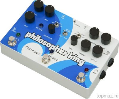 PIGTRONIX EGC Philosopher King Envelope Generator Compressor