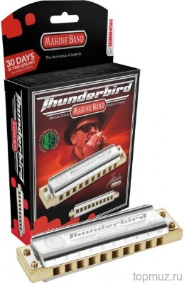 Губная гармошка HOHNER Marine Band Thunderbird Low A (M201173X) с уроками